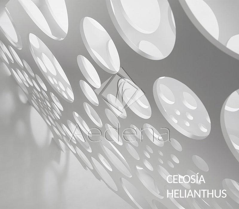 Celosia_Helianthus_1(1)