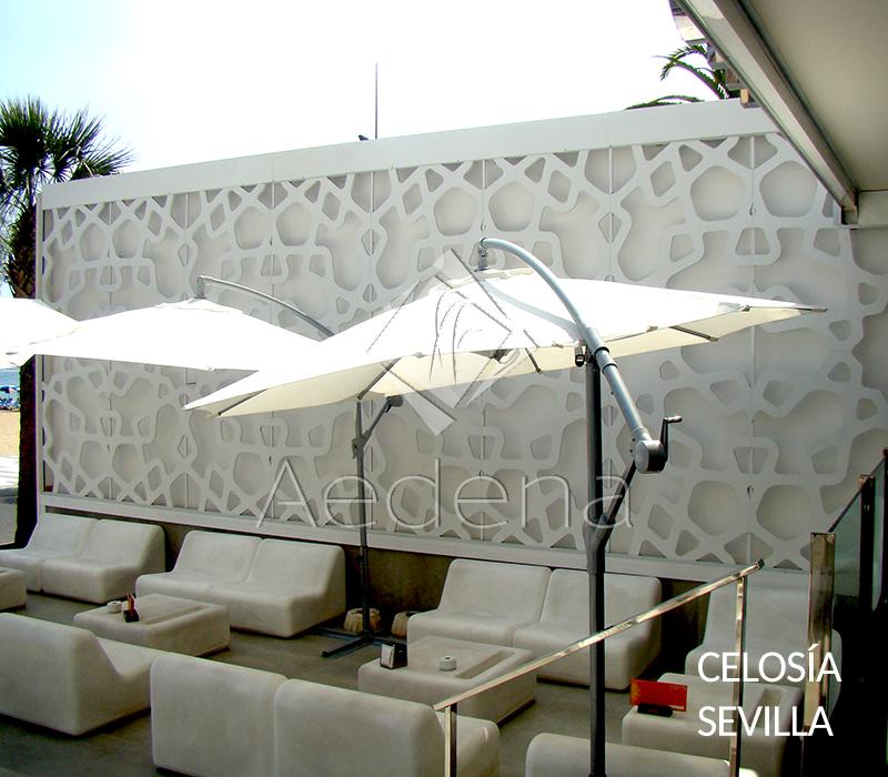 Celosia_Sevilla_1