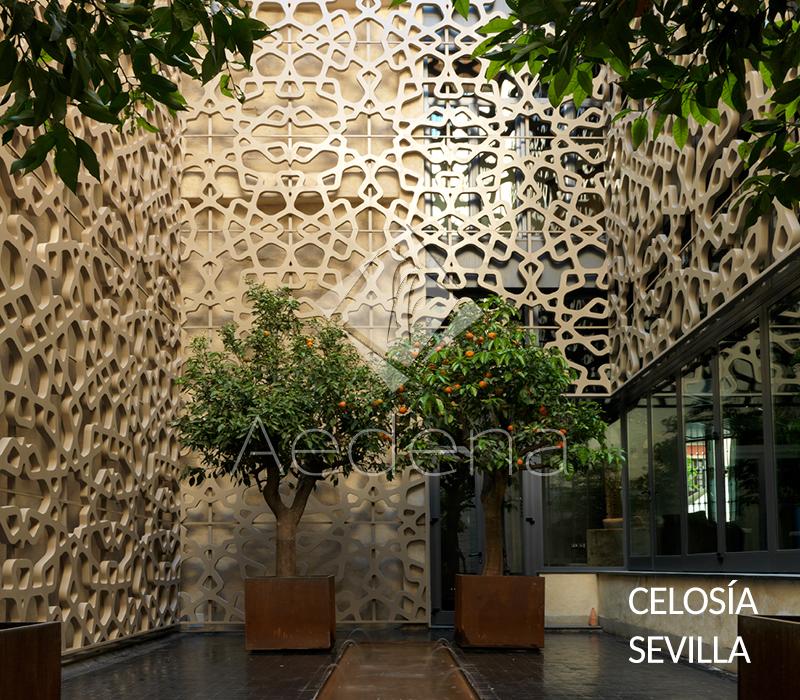 Celosia_Sevilla_2